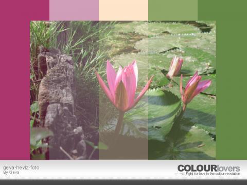 Színpalettát mindenkinek - színek saját fotóról